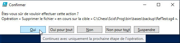 Option -Confirm de Remove-Item gérée par la fonction DeleteFile